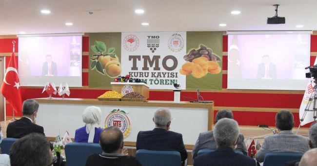 TMO'nun Kayısı Alım Fiyatı: Kükürtlü 21 TL, Günkurusu 23 TL