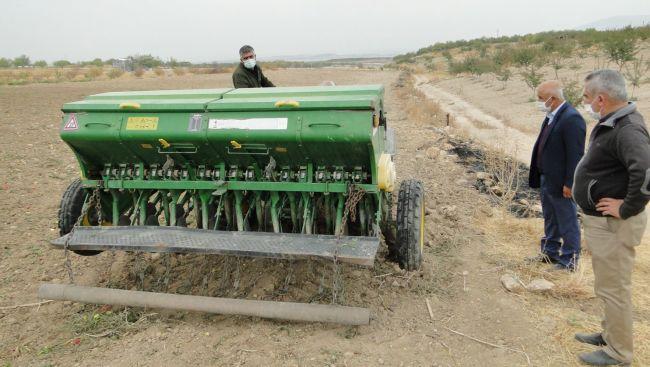 Yerli Tohum Ekmeklik Buğday Ekimi