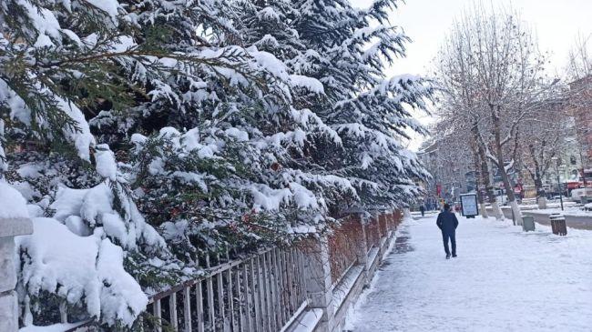kar genel4