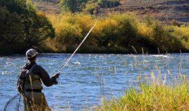 Balık Avı Yasağını İhlal Edenlere Ceza