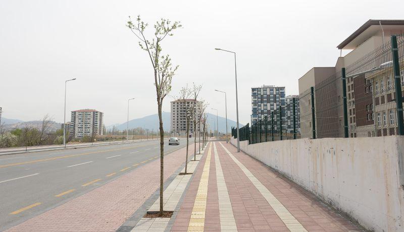 Büyükşehir'den Çiftlik Caddesine Fidan Dikimi