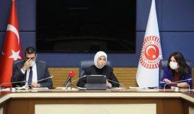 Çalık, Kadına Şiddeti Araştırma Komisyonu Başkanı