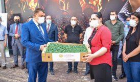 Büyükşehir 400 Bin Sebze Fidesi Dağıttı