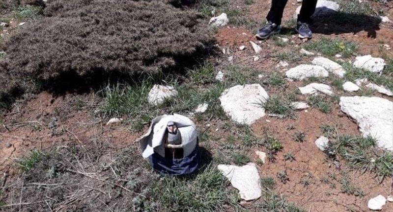 Doğanşehir'de Kurak Avcısına Ceza