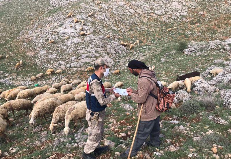 Jandarma, Bu Kez 'Ödeme' İçin Dağlarda..
