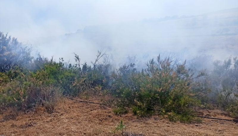 Arguvan'da Ağaçlık Alanda Yangın Çıktı