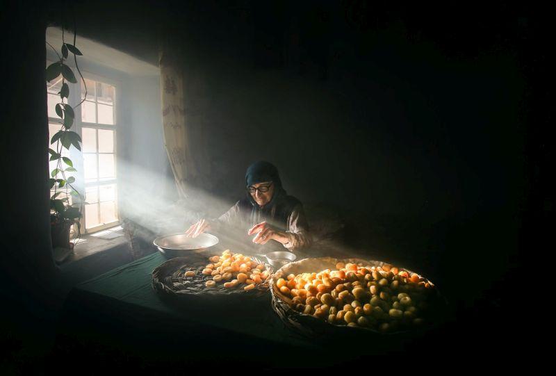 'Kayısı Hasadı Fotoğraf Yarışması' Sonuçlandı