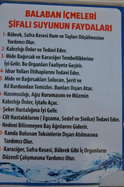 balaban icme2