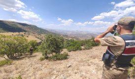 Jandarma Ormanlık Alanlarda Denetim Yapıyor