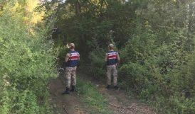 Jandarma Ormanlık Alan Denetimini Sürdürüyor
