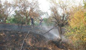 Otluk Yangını Bahçe Sınırında Söndürüldü