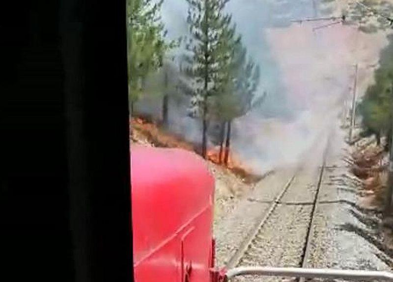 Treni Durdurup Orman Yangınını Söndürdüler